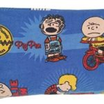 Charlie Brown Peanuts Microwaveable and Freezer Therapy Corn Bag – Aromatherapy