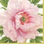 Entertaining with Caspari Blush Paper Dinner Napkins (20 Pack), Pink